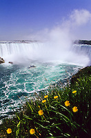 Niagara Falls with the river, a tourboat, foam and dandylion flowers