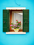 Aqua wall with window, green shutters, flower and pot. The colorful village of Burano, Italy.