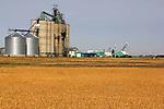 GRAIN FARMING IN NORTHERN ALBERTA