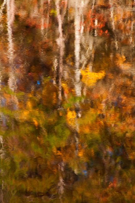Autumn reflects beautiful rich colors in the Chattooga, Chattooga National Wild And Scenic River