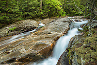 Along the Basin Cascade trail, White Mountains, New Hampshire