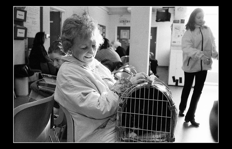 RSPCA - Putney Animal Hospital - 6 Clarendon Drive, London SW15 - 10th December 1999