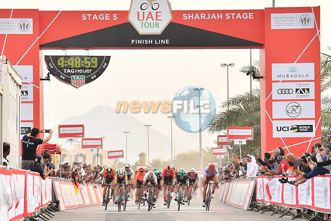 Italian National Champion Elia Viviani (ITA) Deceuninck-Quick Step outsprints Fernando Gaviria (COL) UAE Team Emirates and Sam Bennett (IRL) Bora-Hansgrohe to win Stage 5 of the 2019 UAE Tour, running 181km form Sharjah to Khor Fakkan, Dubai, United Arab Emirates. 28th February 2019.<br /> Picture: LaPresse/Massimo Paolone | Cyclefile<br /> <br /> <br /> All photos usage must carry mandatory copyright credit (© Cyclefile | LaPresse/Massimo Paolone)