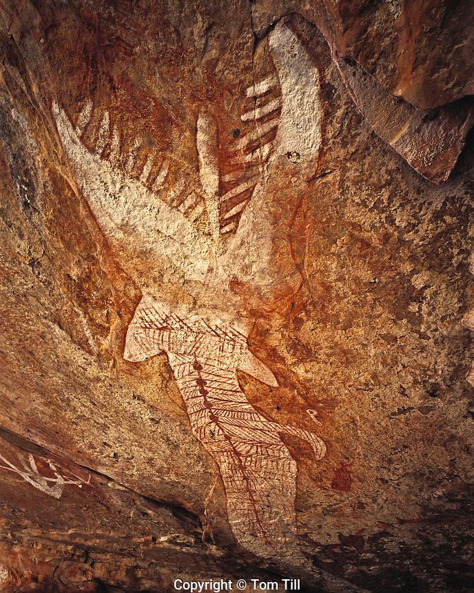 Rainbow Serpent Depiction (40 feet), Arnhem Land, Northern Territory, Australia