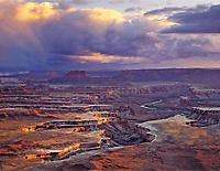 Tom Till Gallery in Moab, Utah