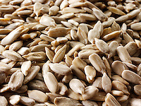 sunflower seeds ( helianthus annuus) - stock photos.