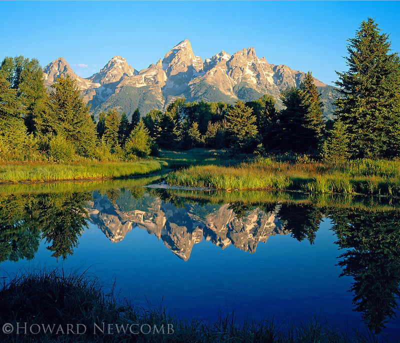 The Grand Tetons reflected in a beaver pond at Schwabacher's Landing, Grand Teton National Park, Wyoming.