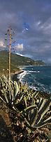 Europe/France/Corse/2B/Haute-Corse/Cap Corse/Nonza: La plage de galets noirs et le village en fond