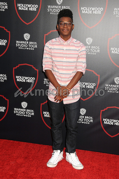 14 July 2015 - Burbank, California - Kamil McFadden. Warner Bros. Studio Tour Stage 48: Script to Screen Launch Event held at Warner Bros. Studios. Photo Credit: Byron Purvis/AdMedia