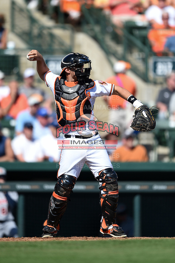 Baltimore Orioles catcher Brian Ward (74) during a Spring Training game against the Detroit Tigers on March 4, 2015 at Ed Smith Stadium in Sarasota, Florida.  Detroit defeated Baltimore 5-4.  (Mike Janes/Four Seam Images)