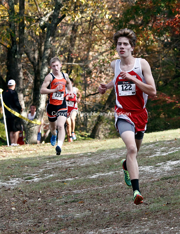 Thomaston, CT- 17 October 2014-101714CM07- Northwestern's Peter Bakker leads the boys Berkshire League cross country meet at Black Rock State Park in Thomaston on Friday. Bakker would go onto win the race.   Christopher Massa Republican-American