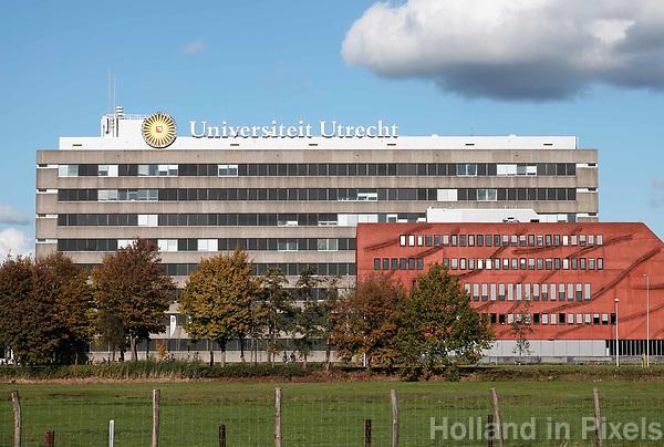 Nederland Utrecht - 2018. Utrecht Science Park (De Uithof). Universiteit Utrecht.. Foto Berlinda van Dam / Hollandse Hoogte