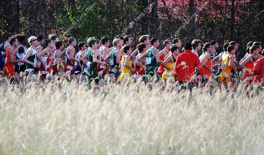 The men run the 8K in the Big Ten cross country championships on Sunday, 10/31/10, at Zimmer Cross Country Course in Verona, Wisconsin