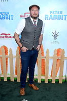 "LOS ANGELES - FEB 3:  Dominic Lewis at the ""Peter Rabbit"" Premiere at the Pacific Theaters at The Grove on February 3, 2018 in Los Angeles, CA"