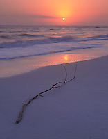 Sanibel Island, FL  &copy;Terry Donnelly  <br /> Pastel sunset colors off Bowman's Beach overlooking  the Gulf of Mexico with driftwood in the sand