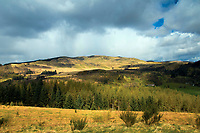 The Forest of Glenartney from Samson's Putting Stone above The Great Trossachs Path, Loch Lomond and the Trossachs National Park, Stirlingshire