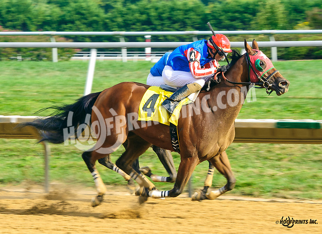 Strongbaksteeltoes winning at Delaware Park on 9/21/16