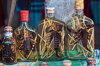 Laos. Ban Xang Hai at the Mekong. Scorpion in alcohol.