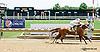 Hughes Next winning at Delaware Park on 7/24/14