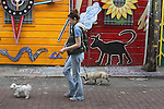 A woman walks her dogs down Balmy Alley in the Mission District of San Francisco near 24th and Folsom. .