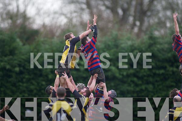 Castleisland v Abbeyfeale Rugby