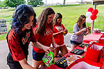WOLCOTT, CT. 10 June 2020-061020BS19 - From left, Wolcott Girls Softball seniors Eily Chambers, Josie Cammarata, Jade Abdul-Lateef, and Abby Sullivan check out their gifts given to them during a celebration of the Wolcott Girls Softball Team seniors at Wakelee Elementary School field on Wednesday. Bill Shettle Republican-American
