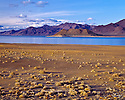 Desert Nevada Scenics Pyramid LAke