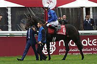 October 07, 2018, Longchamp, FRANCE - Cloth of Stars with Vincent Cheminaud up at the parade for the Qatar Prix de l'Arc de Triomphe (Gr. I) at  ParisLongchamp Race Course  [Copyright (c) Sandra Scherning/Eclipse Sportswire)]