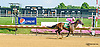 Fashionable Frolic winning at Delaware Park on 7/20/15