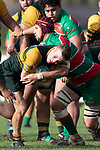 Josh Baverstock crashes in to Michael McKeg as he heads to the tryline. Counties Manukau Premier Club rugby game between Pukekohe and Waiuku, played at Colin Lawrie Fields, Pukekohe on Saturday April 14th, 2018. Pukekohe won the game 35 - 19 after leading 9 - 7 at halftime.<br /> Pukekohe Mitre 10 Mega -Joshua Baverstock, Sione Fifita 3 tries, Cody White 3 conversions, Cody White 3 penalties.<br /> Waiuku Brian James Contracting - Lemeki Tulele, Nathan Millar, Tevta Halafihi tries,  Christian Walker 2 conversions.<br /> Photo by Richard Spranger