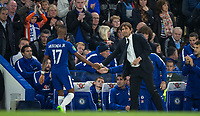 Chelsea Manager Antonio Conte shakes hands with Charly Musonda of Chelsea who seems disappointed to be taken off after 70 minutes during the Carabao Cup round of 16 match between Chelsea and Everton at Stamford Bridge, London, England on 25 October 2017. Photo by Andy Rowland.