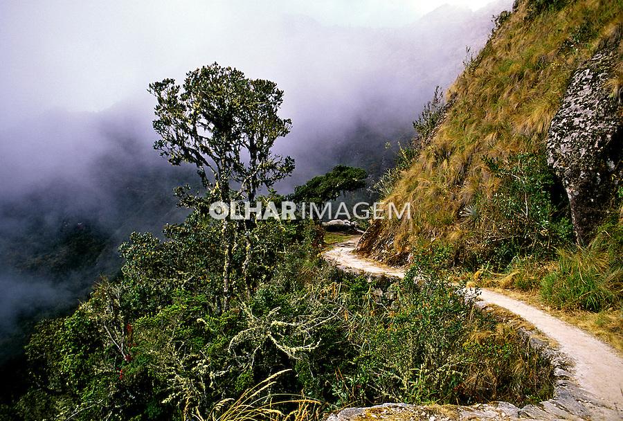 Trilha Inca de Machu-Pichu. Perú. Foto de Stefan Kolumban. Data:1998