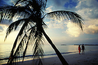 Romantic couple strolls at sunset on Caribbean island beach. Palm tree, vacations, travel. romance, love, couples. Negril, Jamaica, West Indies Long Beach.