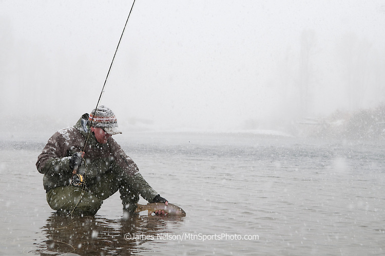 A fly fisherman, Steve Warmann, releases a trout during a snowstorm on the South Fork of the River, Idaho