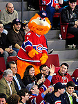 31 March 2010: Montreal Canadiens' mascot Youppi entertains the fans during a game against the Carolina Hurricanes at the Bell Centre in Montreal, Quebec, Canada. The Hurricanes defeated the Canadiens 2-1 in their last meeting of the regular season. Mandatory Credit: Ed Wolfstein Photo