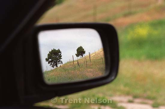Trees in rear-view mirror<br />