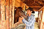 A Cuban tobacco farmer and his horse  -- Vinales, Cuba