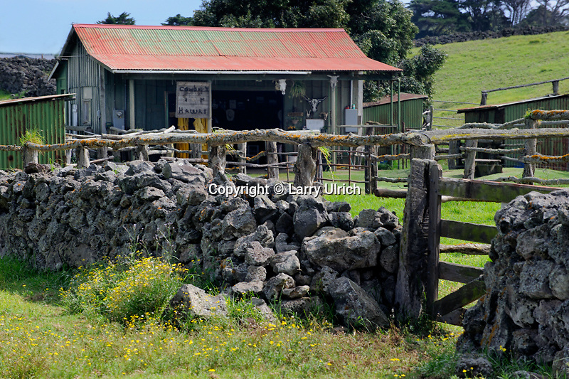 Rock walls near Pukalani Stables<br />
