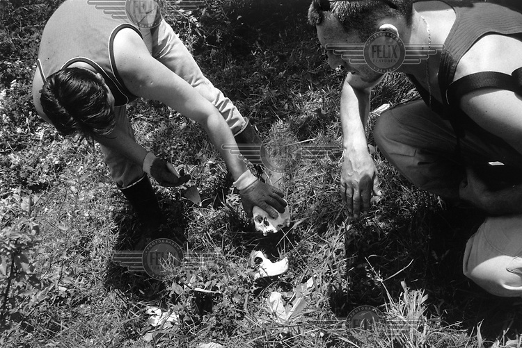 © Paul Lowe / Panos Pictures..BOSNIA HERZEGOVINA. Srebrenica. Members of the commission for missing persons recover the remains of the menfolk of the Baltic family who were killed in an ambush on this hillside while trying to escape from Srebrenica in July 1995. Their remains have laid in the open for the last five years. Up to seven thousand men and boys were massacred by the Serb forces after the failure of the UN troops to provide adequate protection.