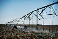 Water sprays from a 1/4 mile long sprinkler for pre watering on a cotton farm owned by Ramon Vela (cq), also known as Noon (cq) near Spearman, Texas, Tuesday, February 15, 2011. With the high price of cotton in recent years, many farmers in the area have switched to start farming cotton...Photo by Matt Nager