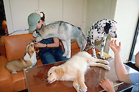 "Korea. South Korea. Seoul. Dog cafe ""Fusion dog mania cafe"". Korean people come to eat, drink and relax themselves among hundred dogs which are there for the customers. People can love and choose among various dogs the ones they want to hold or pat. Dogs are perceived as friendly companionship. Young teenage girl with a variety of dogs. © 2002 Didier Ruef"
