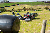 Loading silage bags in black plastic wrapping, Chipping, Preston, Lancashire.