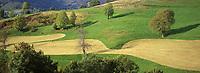 France/15/Cantal/Parc Régional des Volcans/Massif du Puy Mary (1787 mètres): Paturages et graphisme champêtre de la vallée de Mandailles