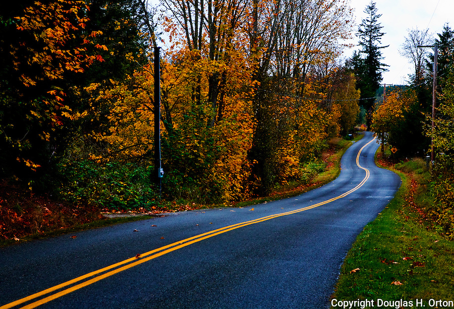 Country road winding through farmland near Port Hadlock and Port Townsend, WA on the famous Olympic Penninsula. Olympic Peninsula