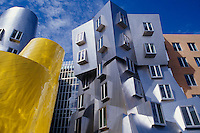 Stata Center at MIT, Cambridge, MA.Frank Gehry = architect