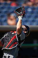 Louisville Cardinals catcher Pat Rumoro (18) during practice before a game against the Ball State Cardinals on February 19, 2017 at Spectrum Field in Clearwater, Florida.  Louisville defeated Ball State 10-4.  (Mike Janes/Four Seam Images)