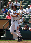 July 14, 2003:  Shane Andrews of the Red Wings, Class-AAA affiliate of the Minnesota Twins, during a International League game at Frontier Field in Rochester, NY.  Photo by:  Mike Janes/Four Seam Images