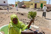 DJIBOUTI, Arta, women sell Khat leaves, which is a chewing drug /  DSCHIBUTI, Arta, Verkauf der Droge Khat, das Kauen der Blaetter des Kathstrauch erzeugt einen Rauschzustand, in Djibouti ist der Verkauf staatlich geregelt, die Blaetter kommen aus Aethiopien