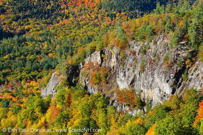 Autumn foliage from the Boulder Loop Trail. This trail is located along the Kancamagus Highway (route 112), which is one of New England's scenic byways in the White Mountains, New Hampshire USA