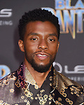 Black Panther - Los Angeles Premiere 1-29-18
